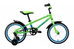 WELT DINGO 16 (2020) Acid Green/Blue/Black