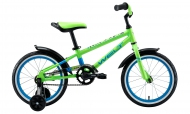 WELT DINGO 16 (2021) Acid Green/Blue/Black