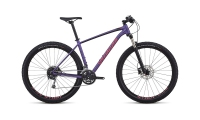 SPECIALIZED MEN'S ROCKHOPPER EXPERT 29 (2018) Purple/Pink/Black